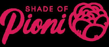 Партнер — Pioni